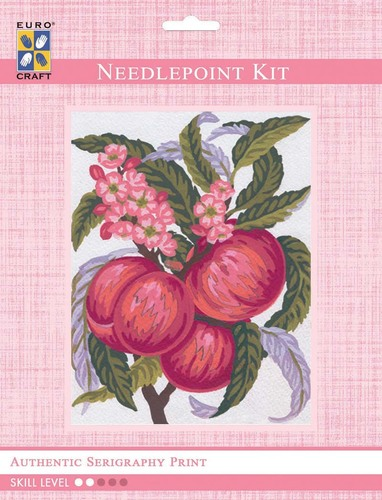 3160K - Eurocraft NEEDLEPOINT KIT 14x18cm Peaches
