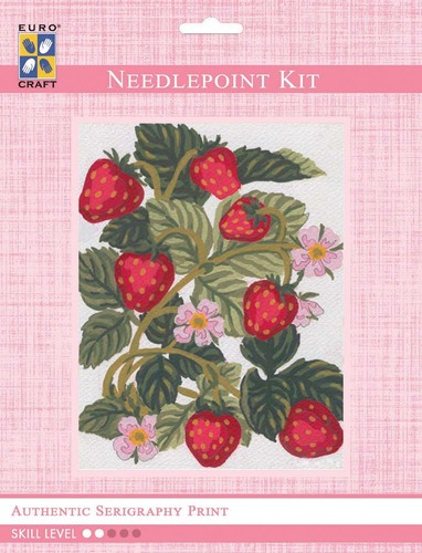 3161K - Eurocraft NEEDLEPOINT KIT 14x18cm Strawberries
