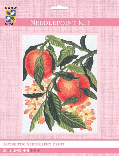 3163K - Eurocraft NEEDLEPOINT KIT 14x18cm Oranges