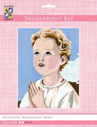 3221K - Eurocraft NEEDLEPOINT KIT 14x18cm Boy Praying