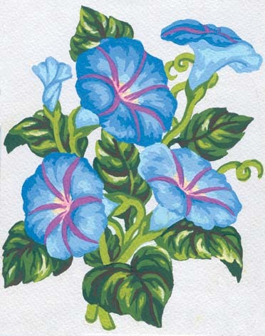 3038 Needlepoint Canvas 14x18cm Morning Glory