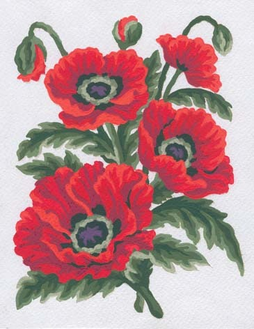Needlepoint Canvas 14x18cm Poppies