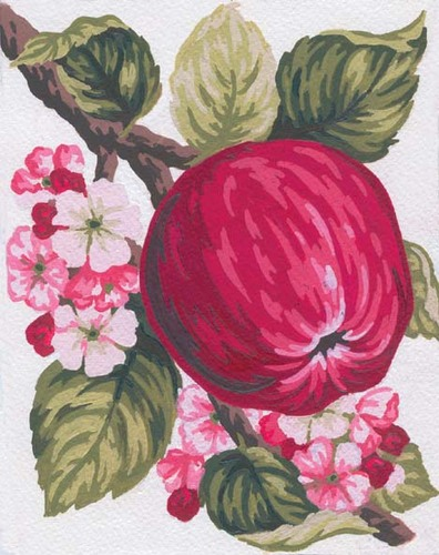 Needlepoint Canvas 14x18cm Apples