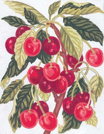 Needlepoint Canvas 14x18cm Cherries