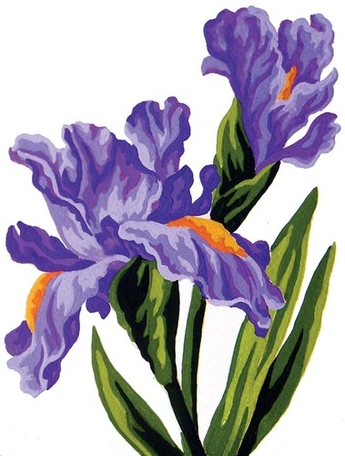 Needlepoint Canvas 14x18cm Irises