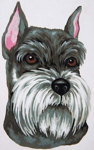 Needlepoint Canvas 22x30cm Schnauzer
