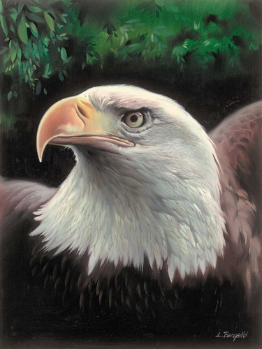 Needlepoint Canvas 22x30cm Magestic Eagle