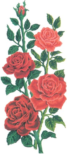 Needlepoint Canvas 21x49cm Red Roses