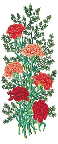 Needlepoint Canvas 21x49cm Carnations