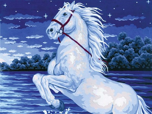 10363 Needlepoint Canvas 30x40cm Magical Horse