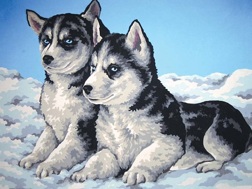 Needlepoint Canvas 30x40cm Husky Puppies