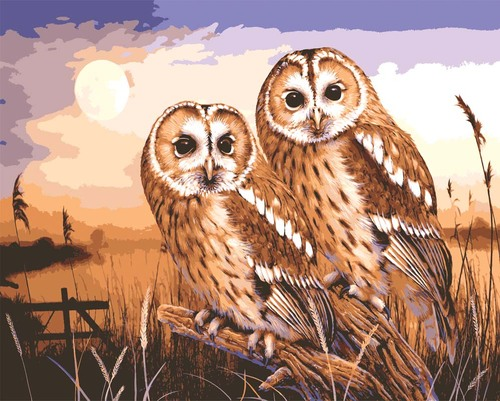Needlepoint Canvas 30x40cm Owls by Moonlight