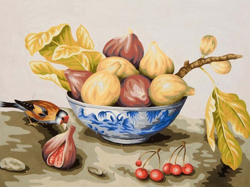 10478 Needlepoint Canvas 30x40cm Bowl of Figs