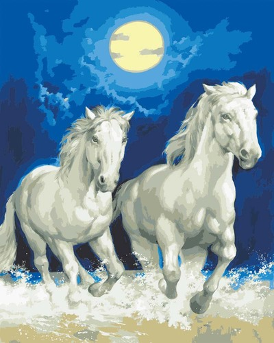 11857 Needlepoint Canvas 50x40cm Moonlight Gallop