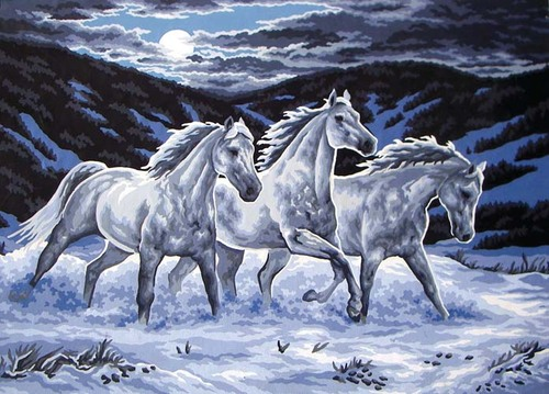 Needlepoint Canvas 50x70cm Midnight Stallions