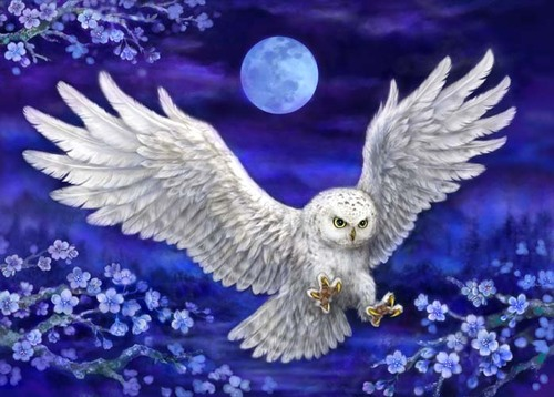 12996 Needlepoint Canvas 50x70cm Moonlight Owl