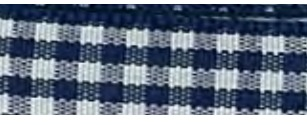 SR1403/10 370 Gingham Ribbons 10mm 20mtr navy