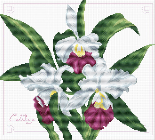 340.009 No-Count Cross Stitch Kits Bouquet of Orchids 33x29cm