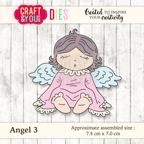 CW029 metal cutting die Angel 3 - 7