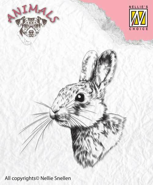 ANI015 Clear stamps rabbit-2