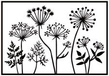 HSF025 Embossing Folder dandelions