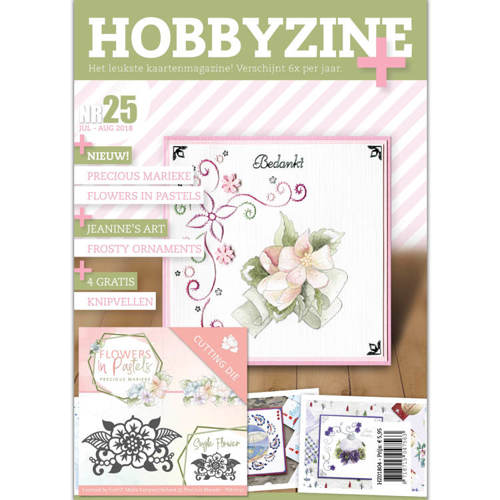 HZ01804 Hobbyzine Plus 25
