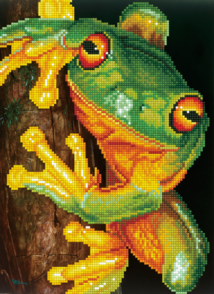 DD7.031 DIAMOND DOTZ® - 27x37cm - Green Tree Frog