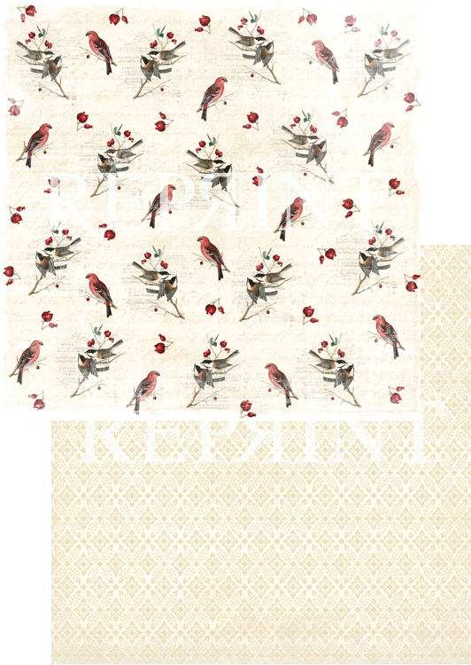 RP0236 Nordic Light Collection Patterned paper 12x12, 200 gm Birds