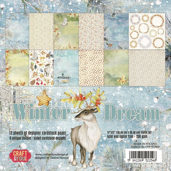 "CPS-WDR30 WINTER DREAM Paper Set 12x12"", 12 sheets ( 200 gsm )"