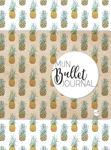 MIJN BULLET JOURNAL - ANANAS