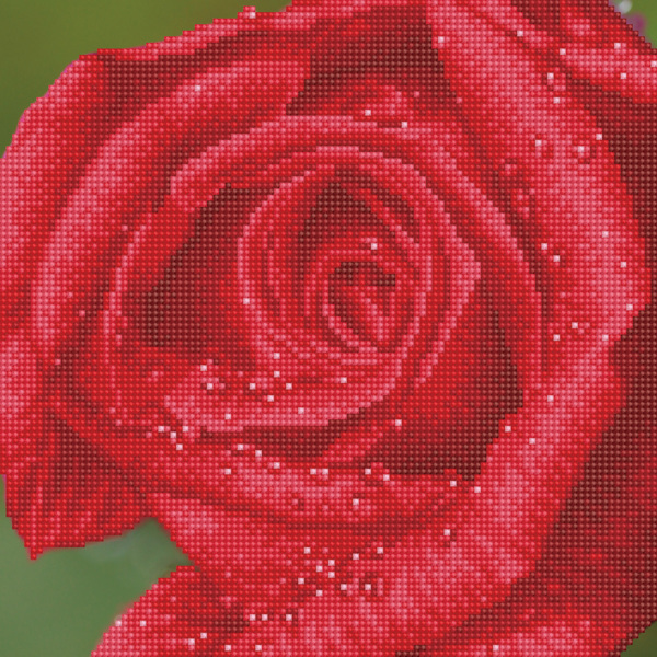DD5.039 DIAMOND DOTZ® - 30.5x30.5cm - Rose Dew