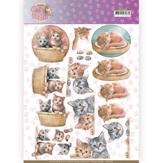 CD11368 3D Knipvel - Amy Design - Cats World - Kittens