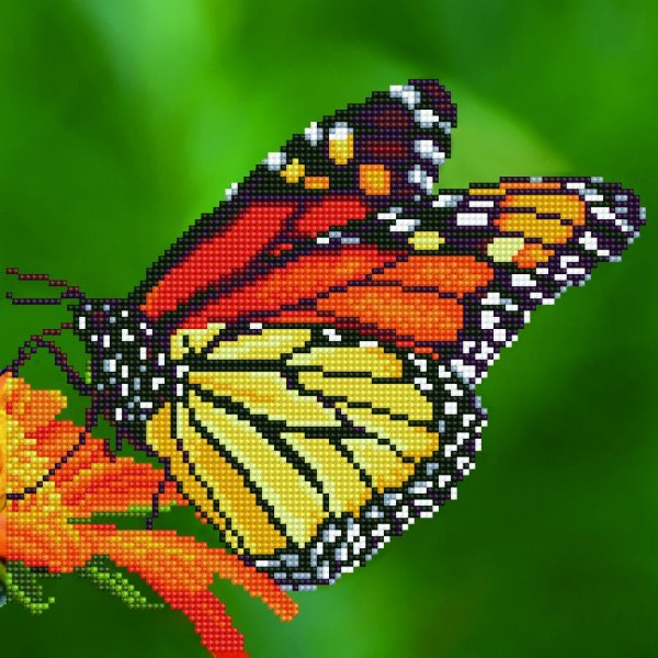 50452 DIAMOND ART - 30.48x30.48cm Kits Monarch Butterfly