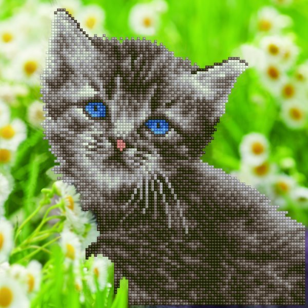 50455 DIAMOND ART - 30.48x30.48cm Kits Kitten