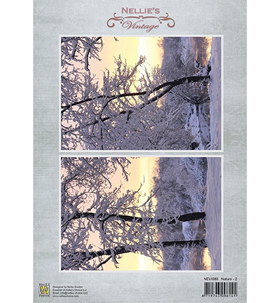 NEVI089 Vintage Decoupage Sheet Nature-2