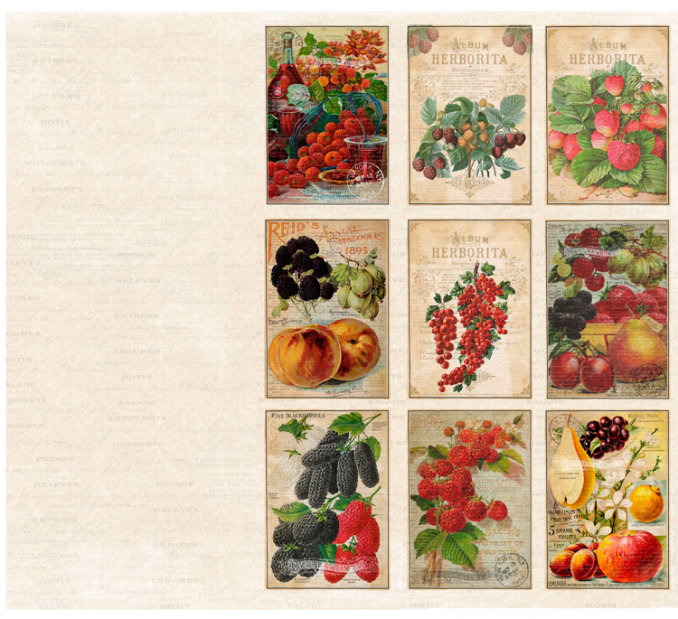 KP0065 Vintage Toppers A4 Cutouts Fruits, 200gsm, doublesided