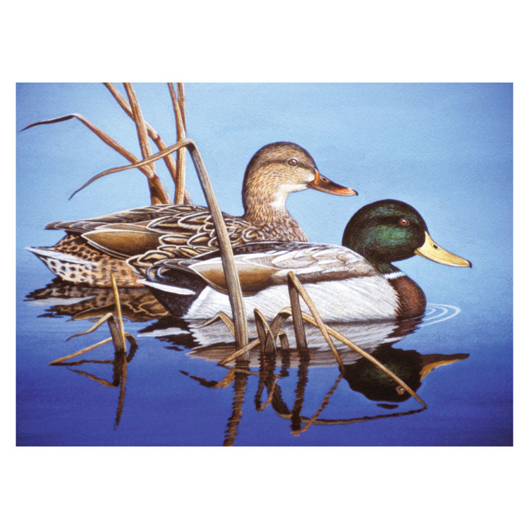 PAL38 PBN - Schilderen op nummer - Adult Large BLUE WATER MALLARDS